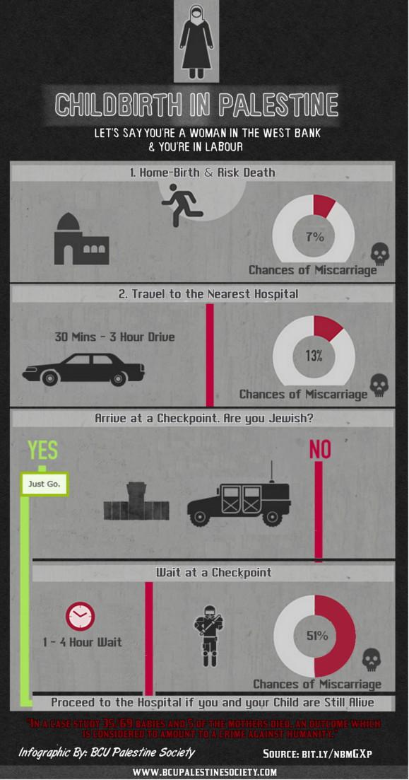 """""""Childbirth in Palestine"""" infographic"""